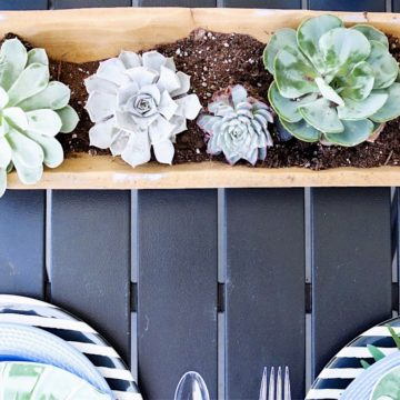 Outdoor Entertaining using Succulents and other Affordable Details, Getting the Patio Summer Ready